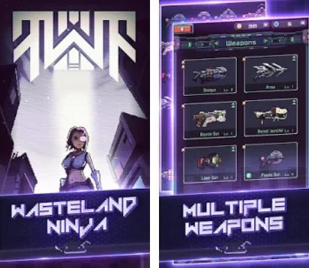 Wasteland Ninja hack